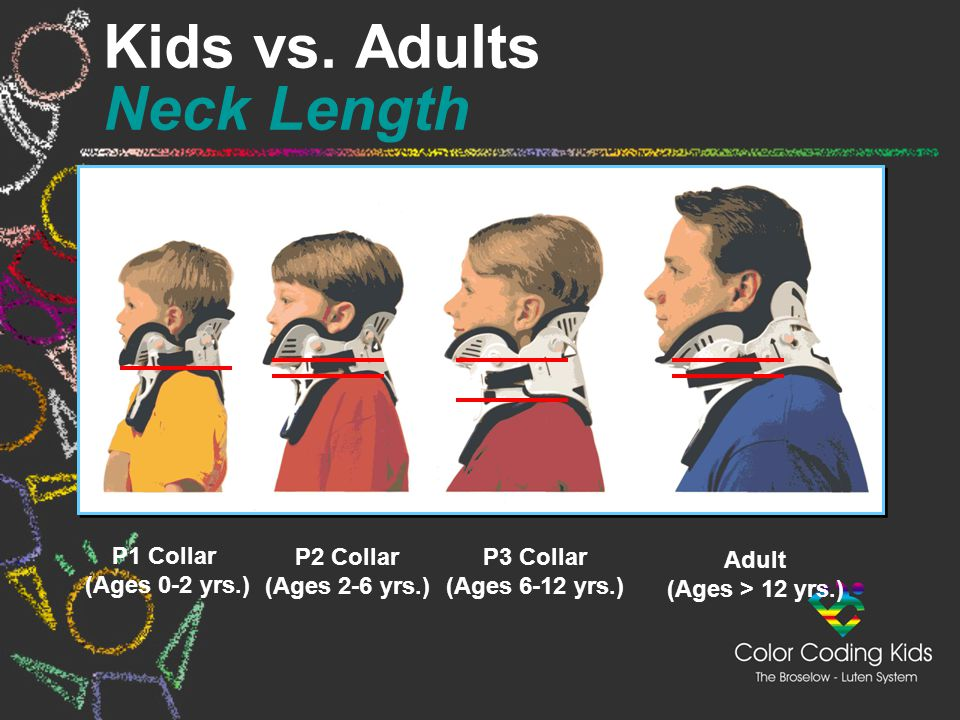 Kids vs. Adults Neck Length