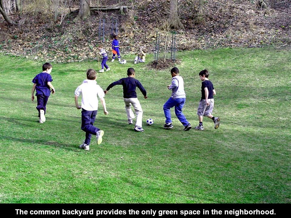 The common backyard provides the only green space in the neighborhood.