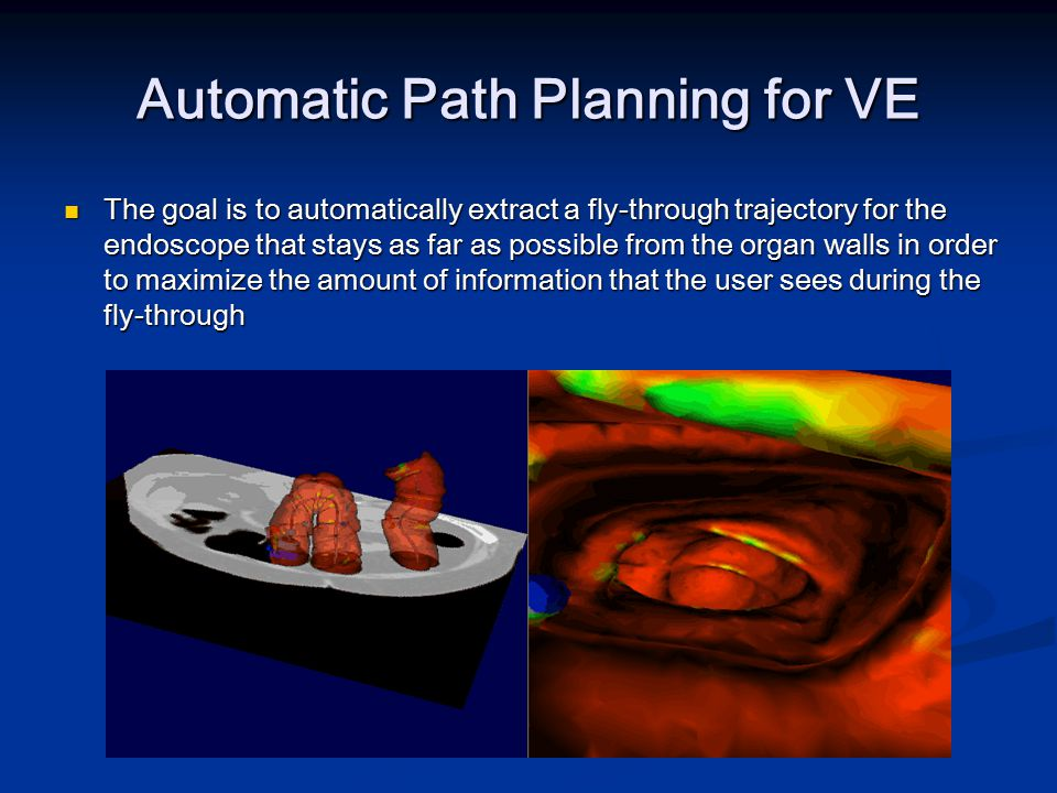 Automatic Path Planning for VE