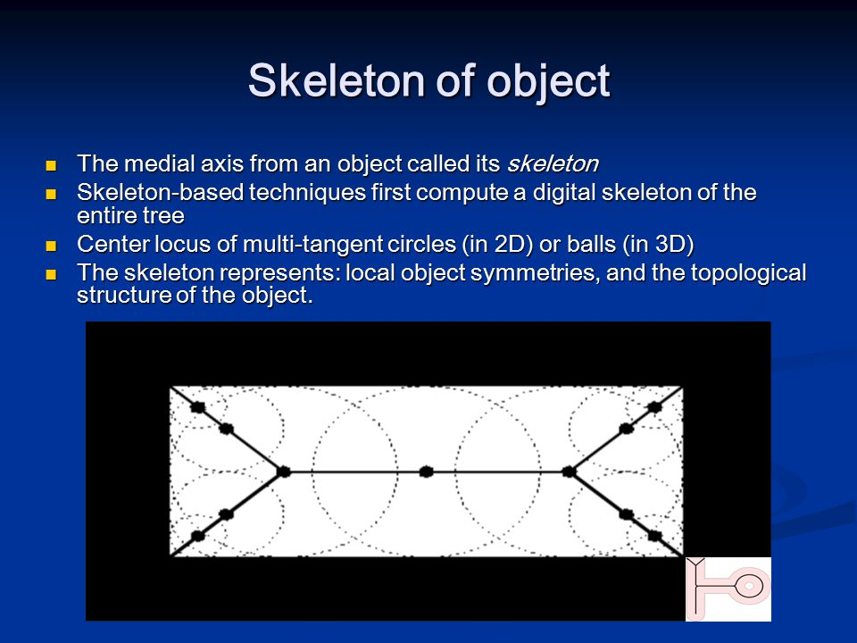 Skeleton of object The medial axis from an object called its skeleton