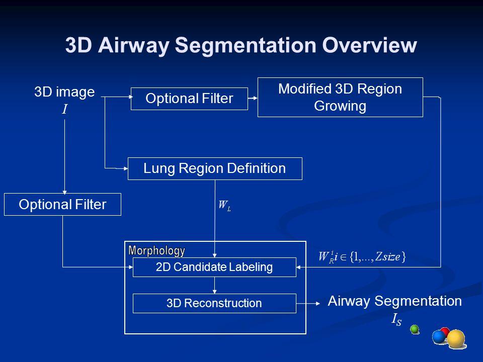 3D Airway Segmentation Overview