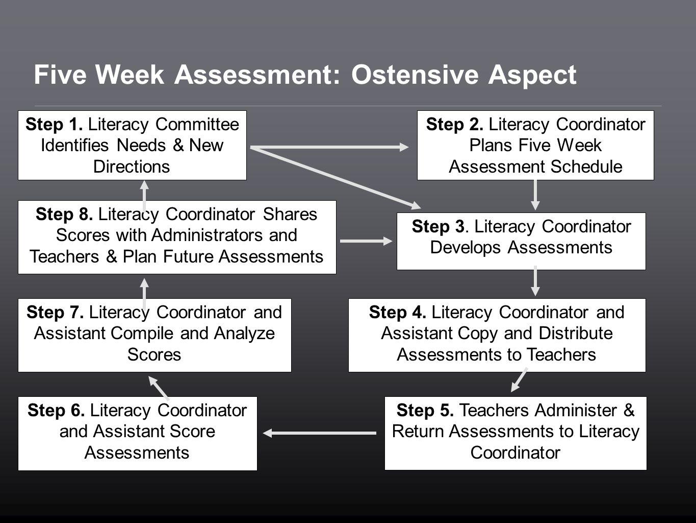 Five Week Assessment: Ostensive Aspect