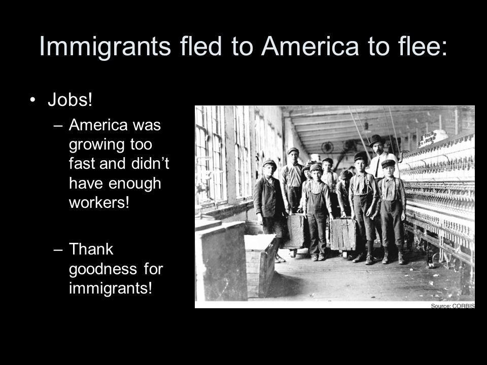 Immigrants fled to America to flee: