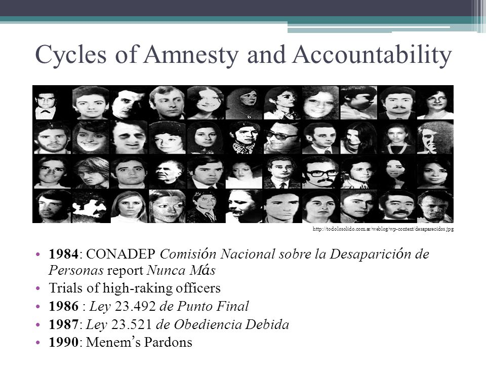 Cycles of Amnesty and Accountability