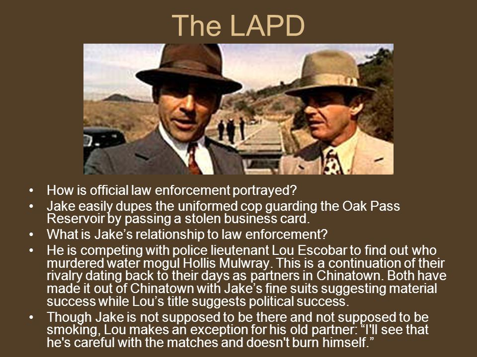 The LAPD How is official law enforcement portrayed