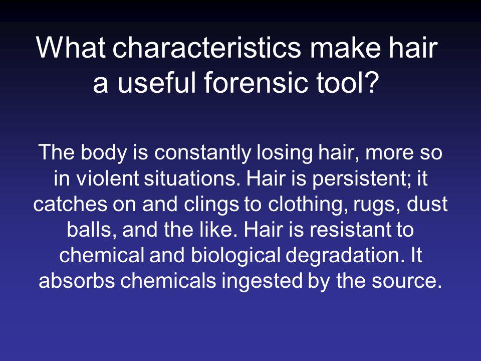 What characteristics make hair a useful forensic tool