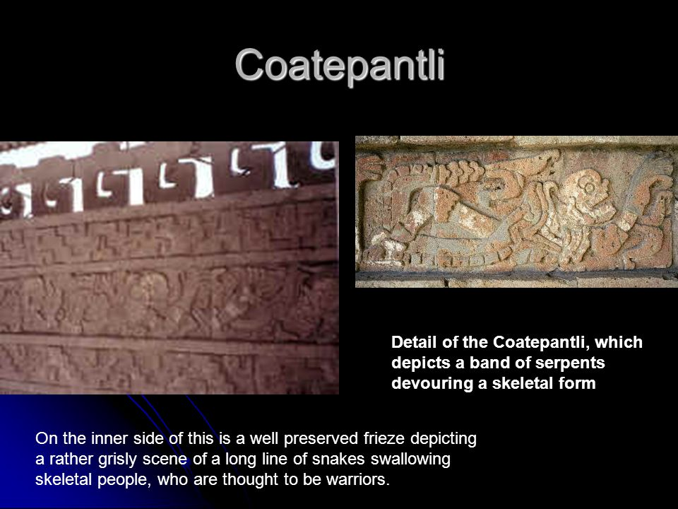 Coatepantli Detail of the Coatepantli, which depicts a band of serpents devouring a skeletal form.