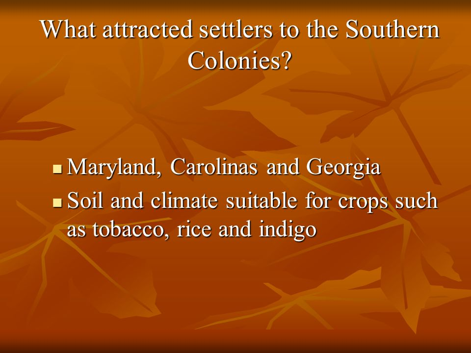 What attracted settlers to the Southern Colonies