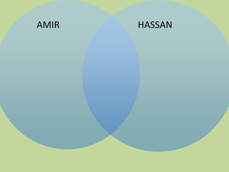 AMIR HASSAN.
