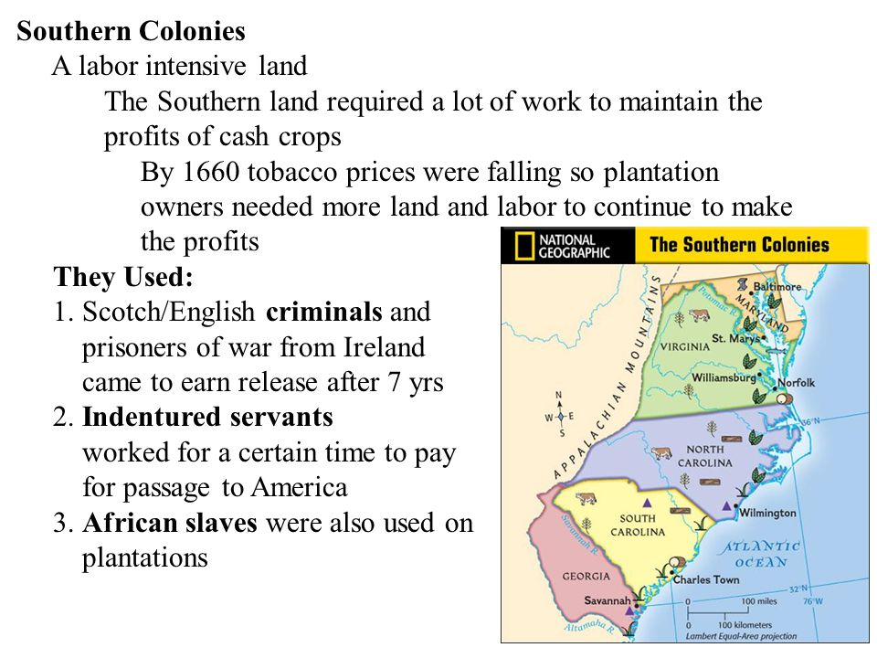 Southern Colonies A labor intensive land. The Southern land required a lot of work to maintain the.