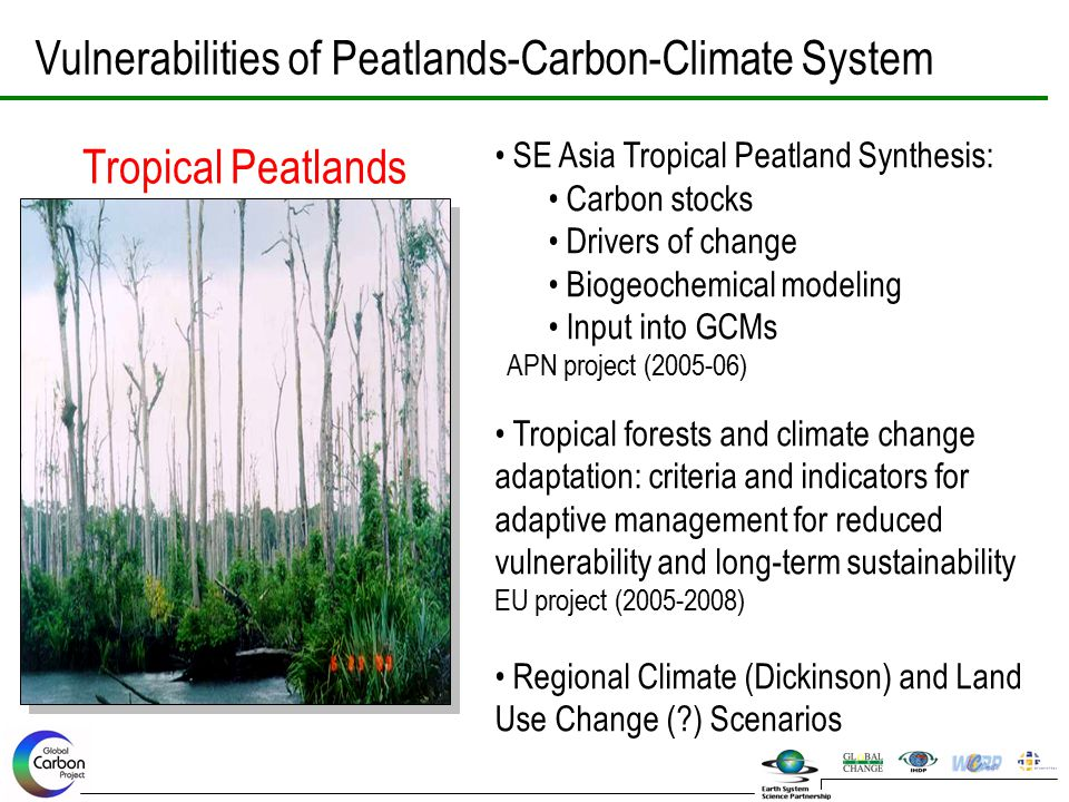 Vulnerabilities of Peatlands-Carbon-Climate System