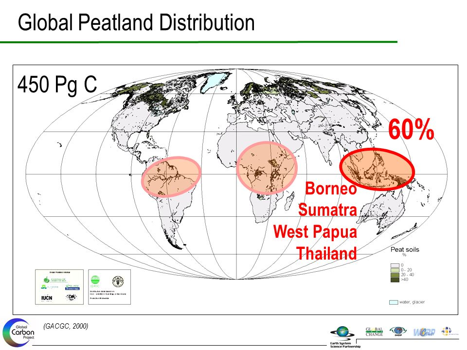 60% Global Peatland Distribution 450 Pg C Borneo Sumatra West Papua