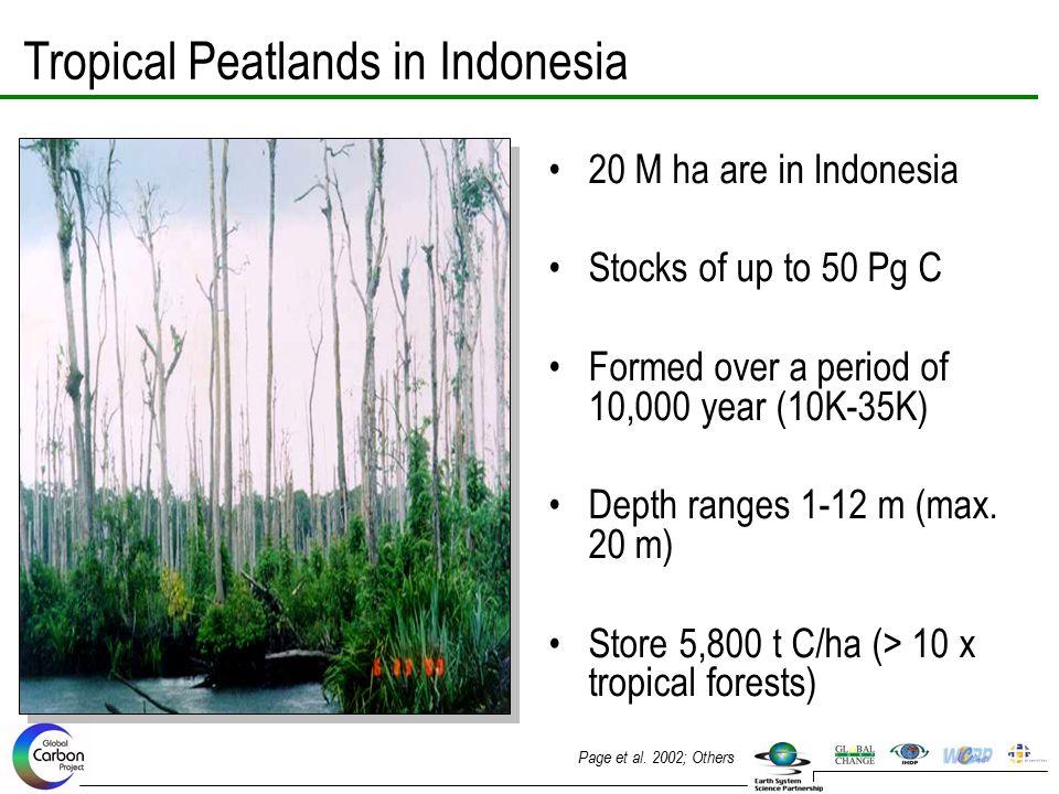 Tropical Peatlands in Indonesia