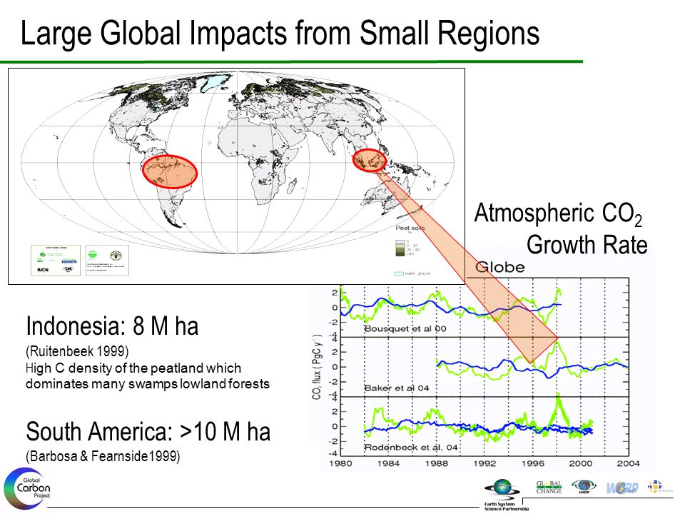 Large Global Impacts from Small Regions