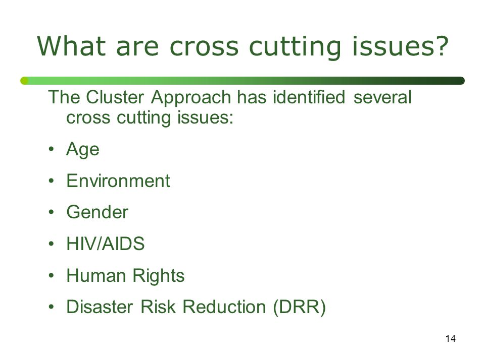 What are cross cutting issues