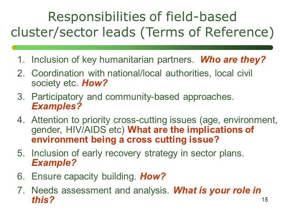 Responsibilities of field-based cluster/sector leads (Terms of Reference)