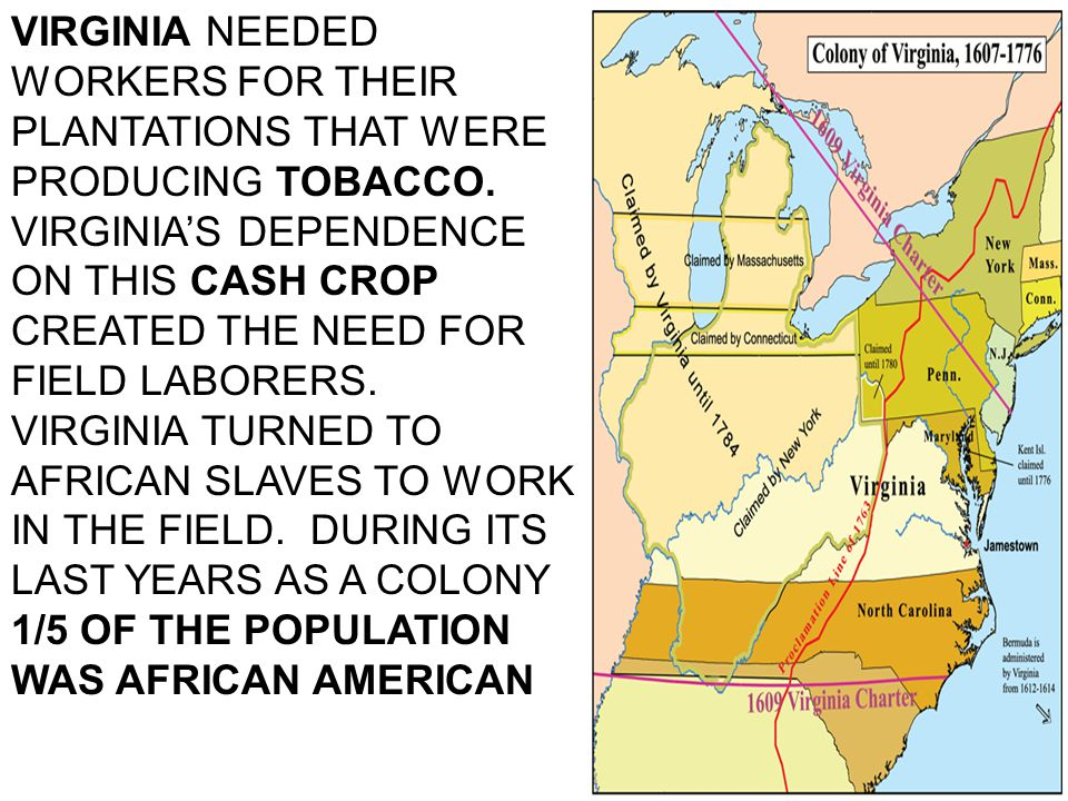 VIRGINIA NEEDED WORKERS FOR THEIR PLANTATIONS THAT WERE PRODUCING TOBACCO.