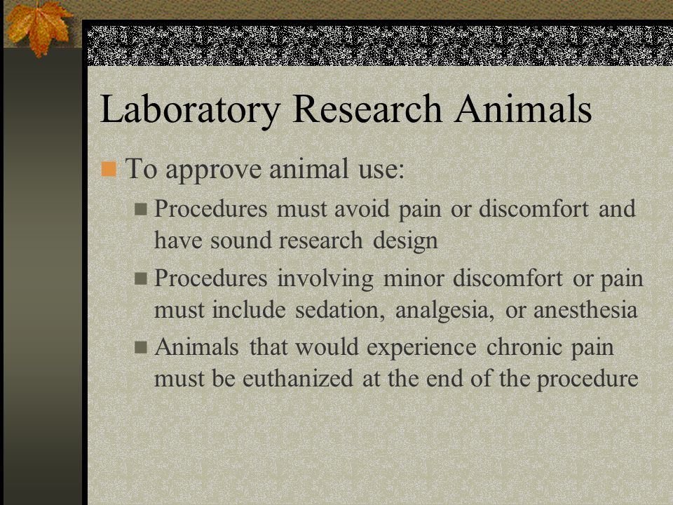Laboratory Research Animals