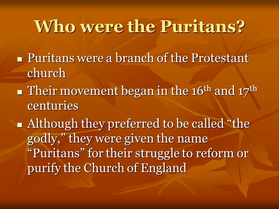 Who were the Puritans Puritans were a branch of the Protestant church