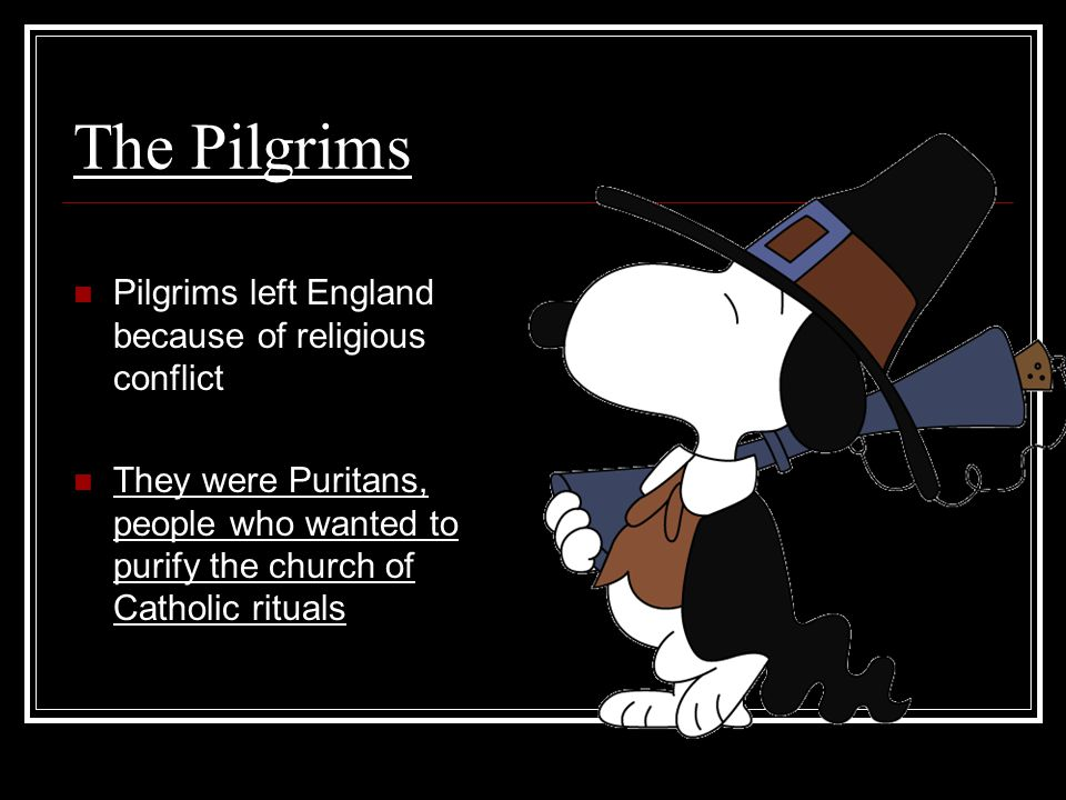 The Pilgrims Pilgrims left England because of religious conflict