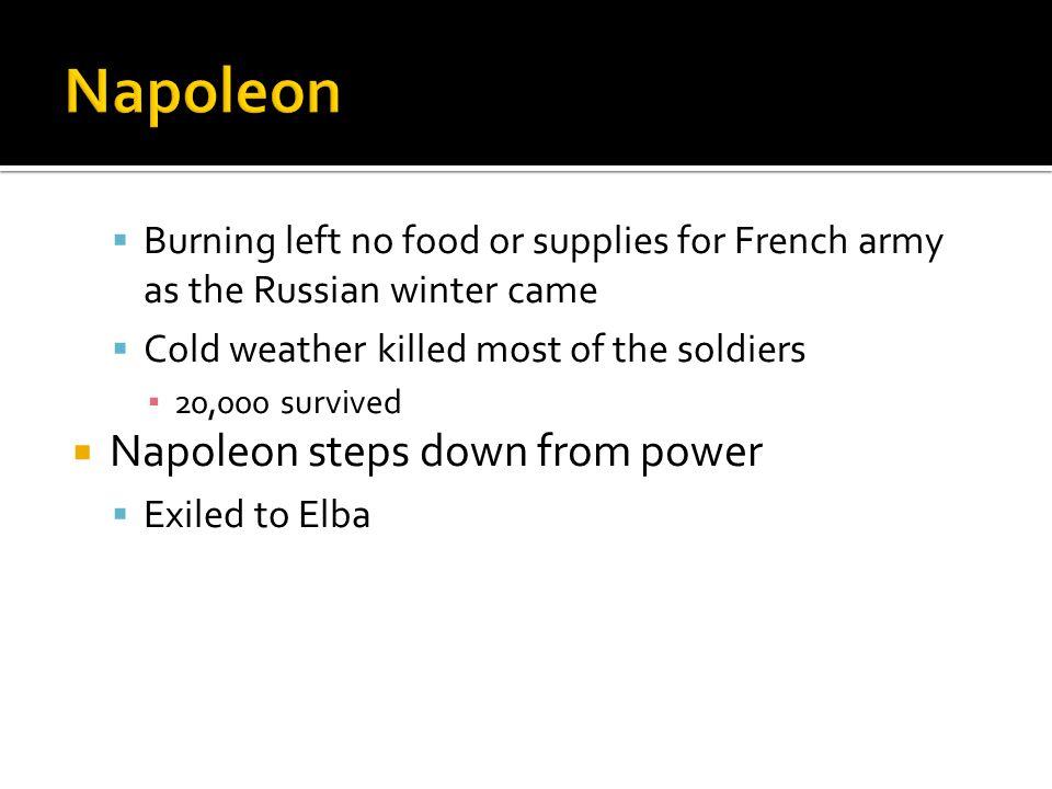 Napoleon Napoleon steps down from power