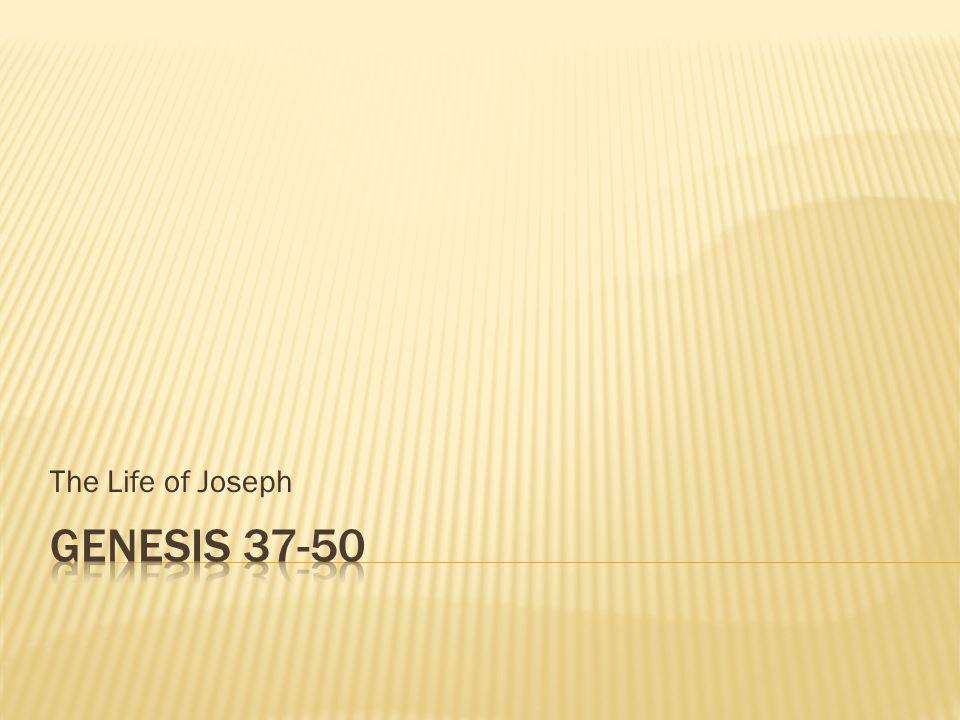 The Life of Joseph Genesis 37-50