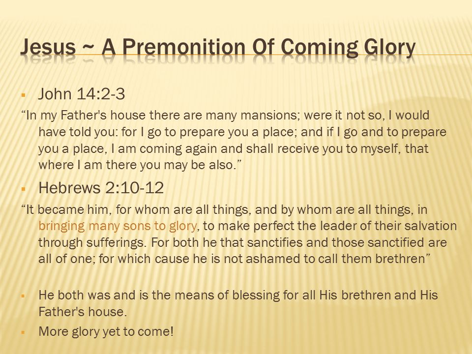 Jesus ~ A Premonition Of Coming Glory