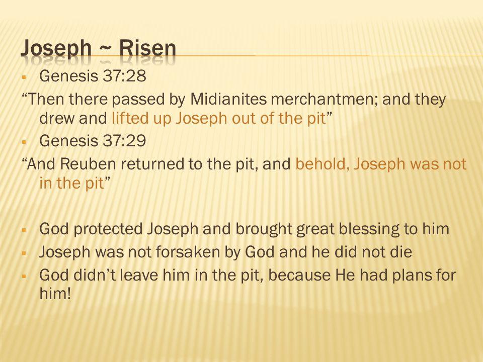 Joseph ~ Risen Genesis 37:28