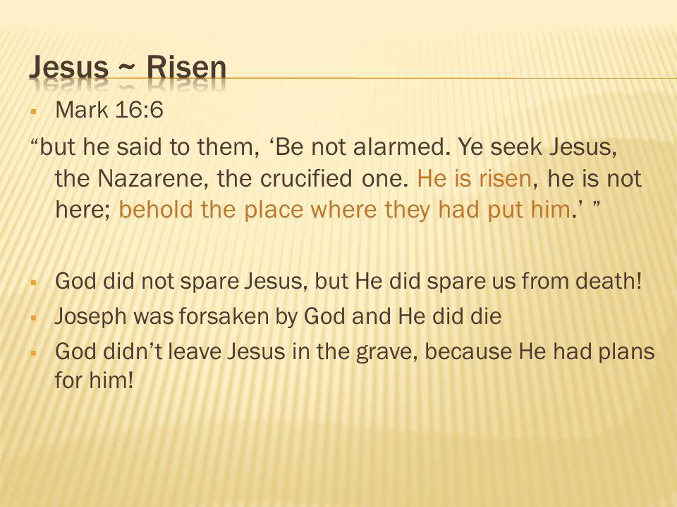 Jesus ~ Risen Mark 16:6.
