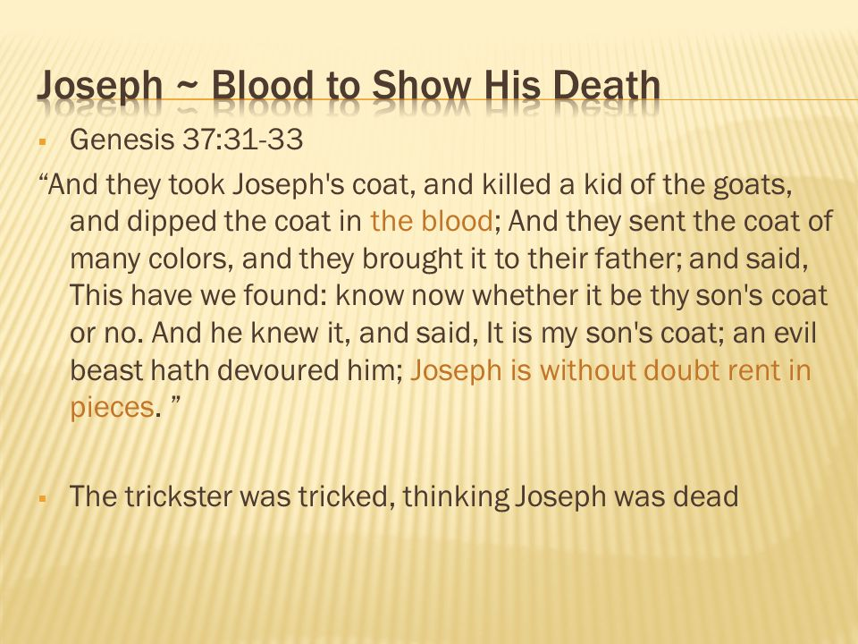 Joseph ~ Blood to Show His Death