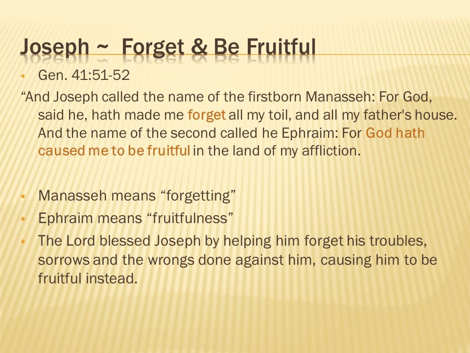 Joseph ~ Forget & Be Fruitful