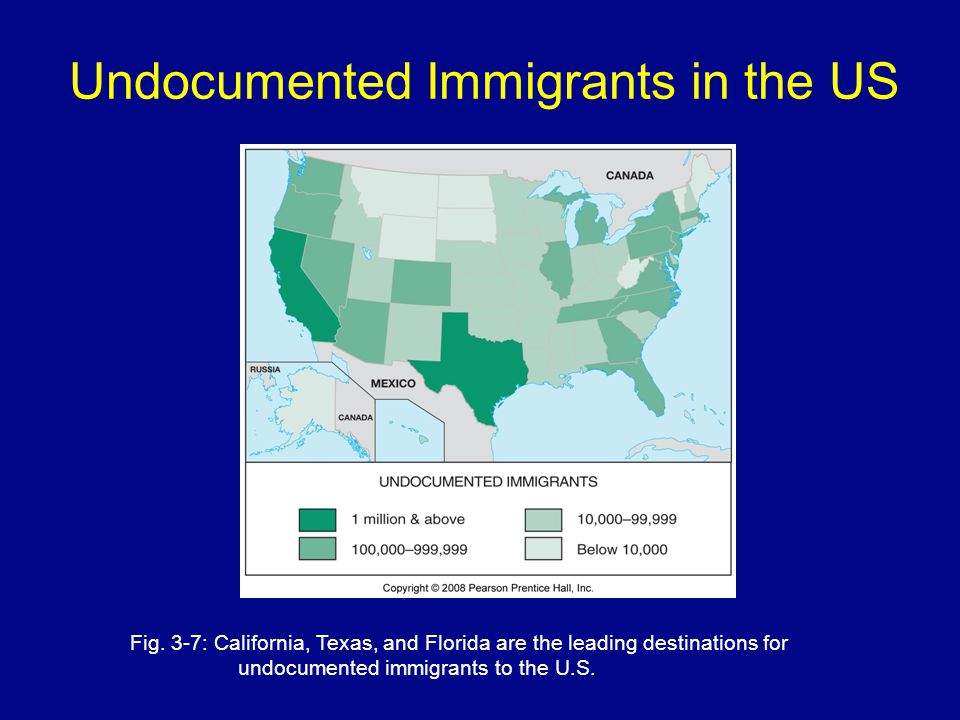 Undocumented Immigrants in the US