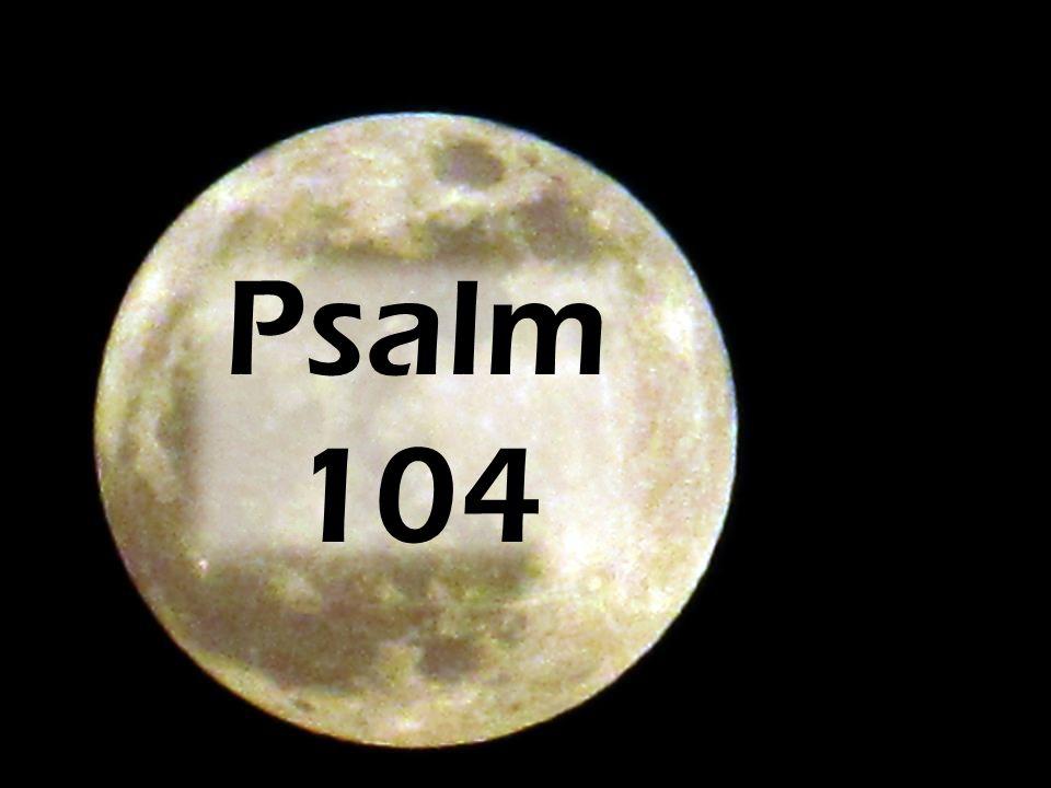 Psalm 104 Verse 19