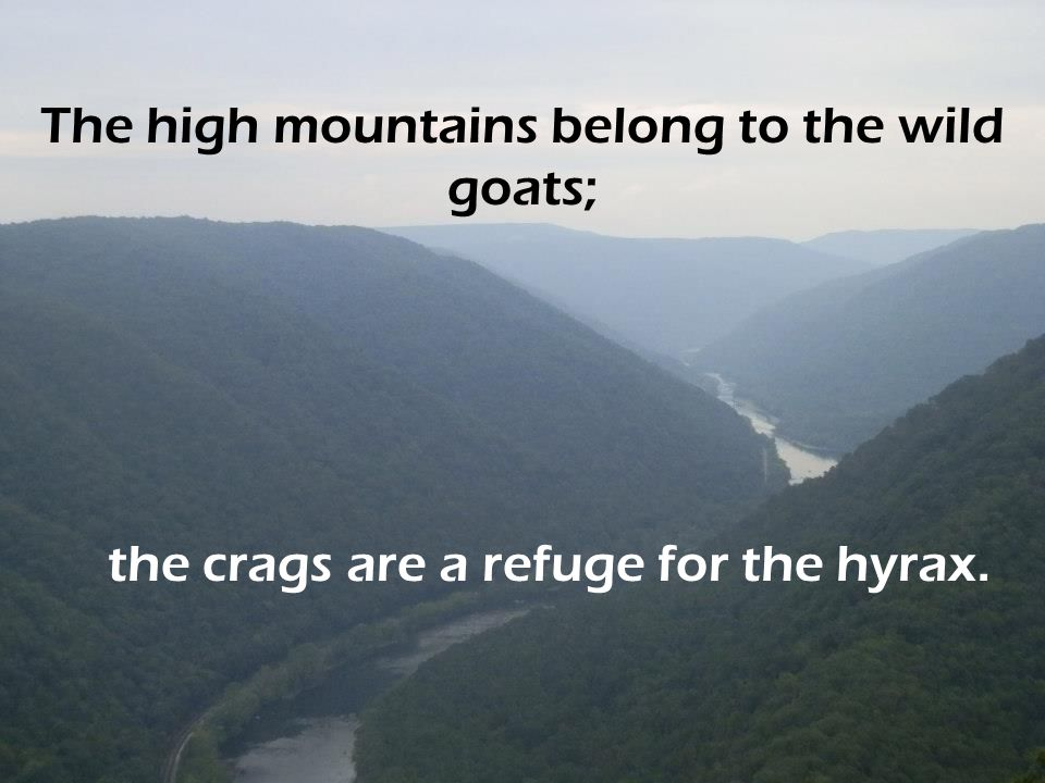 The high mountains belong to the wild goats;