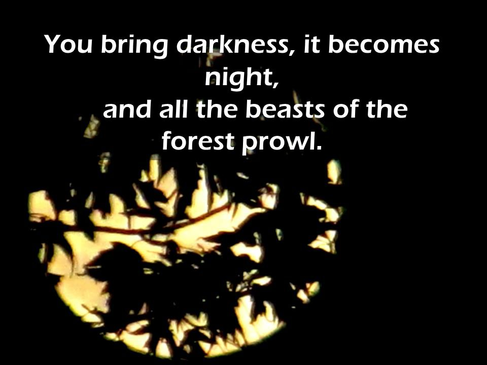 You bring darkness, it becomes night, and all the beasts of the forest prowl.