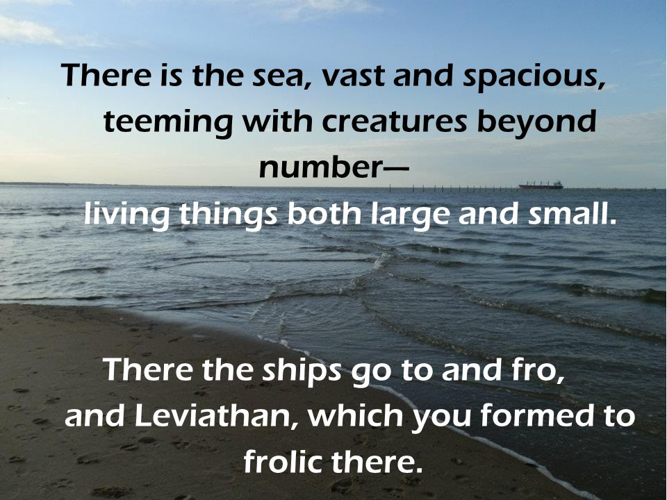 There is the sea, vast and spacious, teeming with creatures beyond number— living things both large and small.