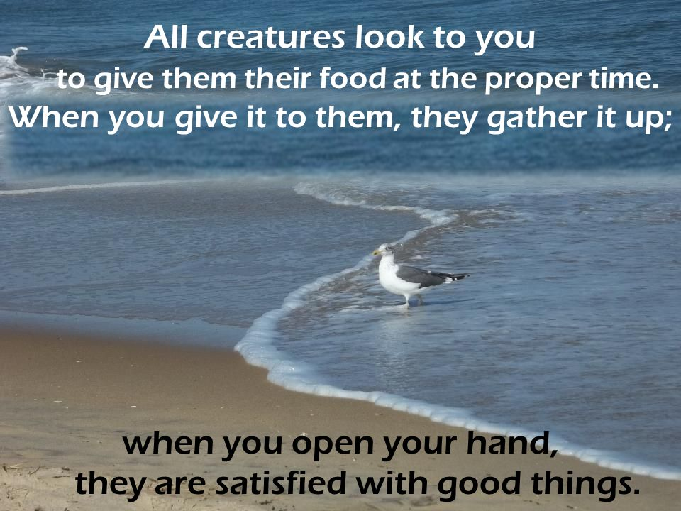 when you open your hand, they are satisfied with good things.