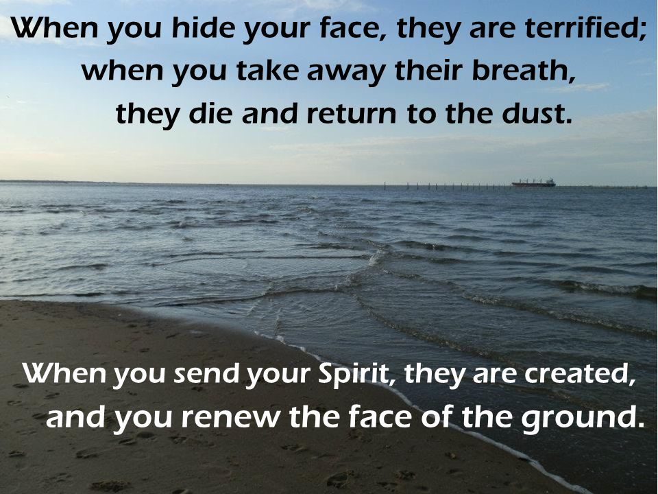 When you hide your face, they are terrified; when you take away their breath, they die and return to the dust.