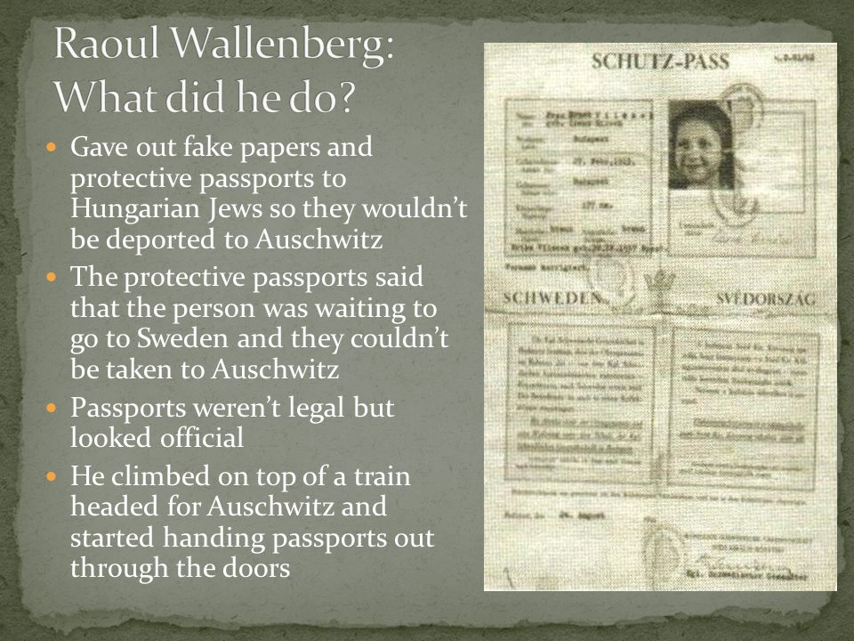 Raoul Wallenberg: What did he do