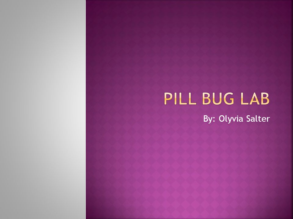 Pill Bug Lab By: Olyvia Salter