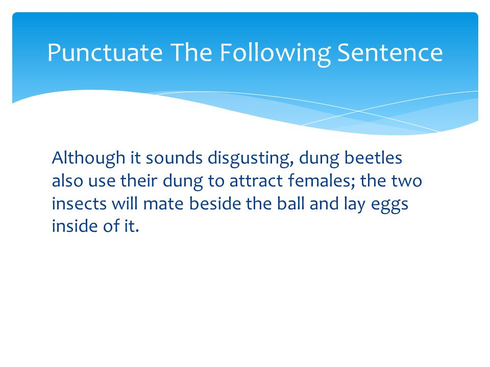Punctuate The Following Sentence
