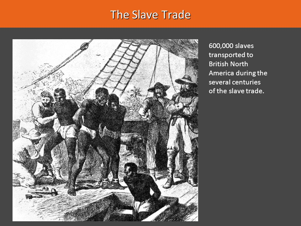 The Slave Trade 600,000 slaves transported to British North America during the several centuries of the slave trade.