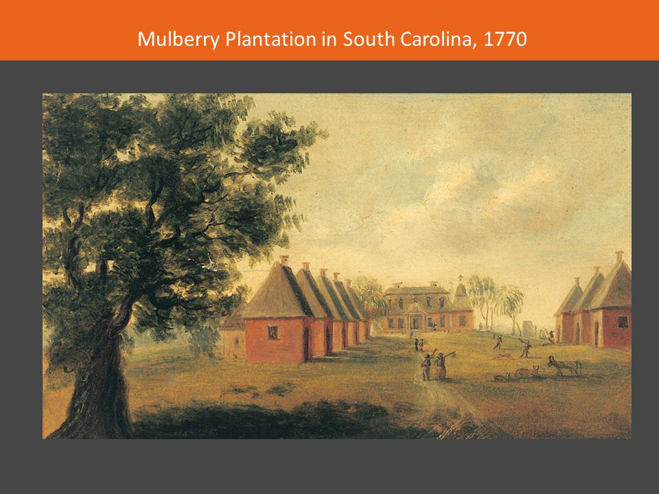 Mulberry Plantation in South Carolina, 1770