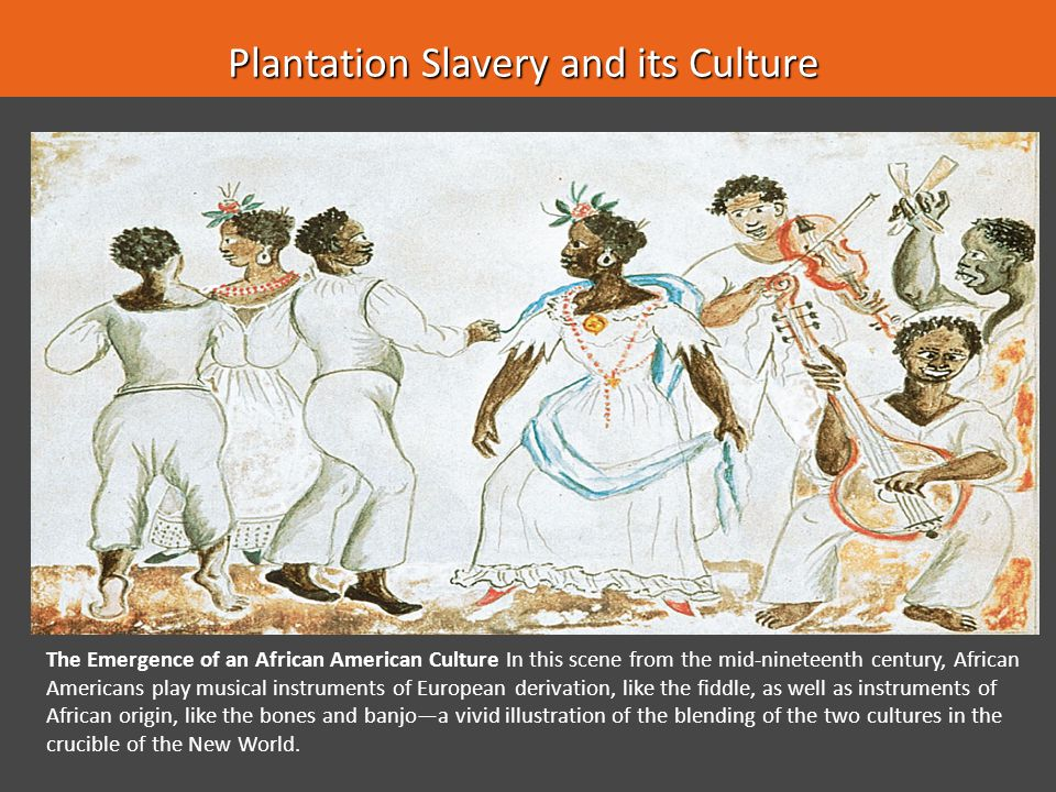 Plantation Slavery and its Culture