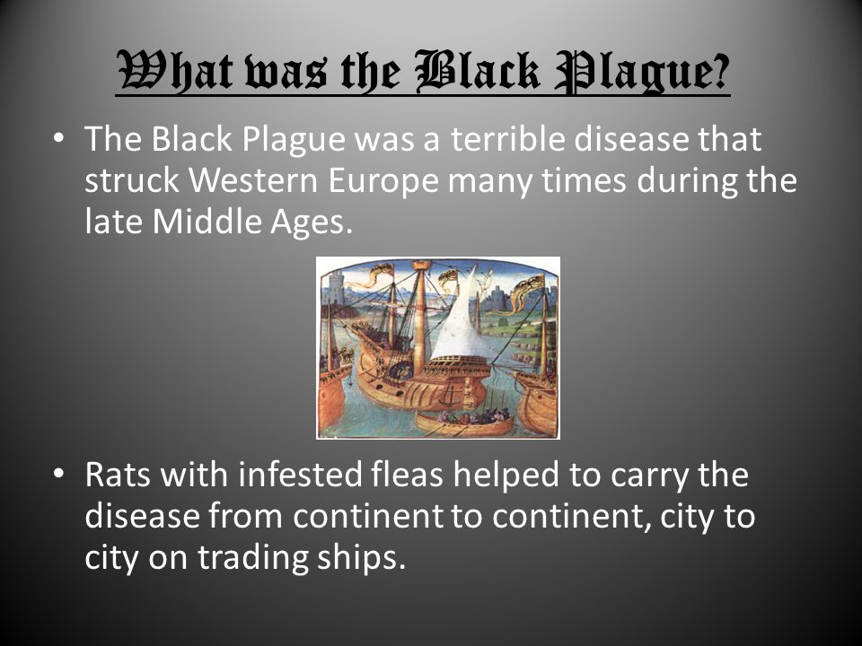What was the Black Plague