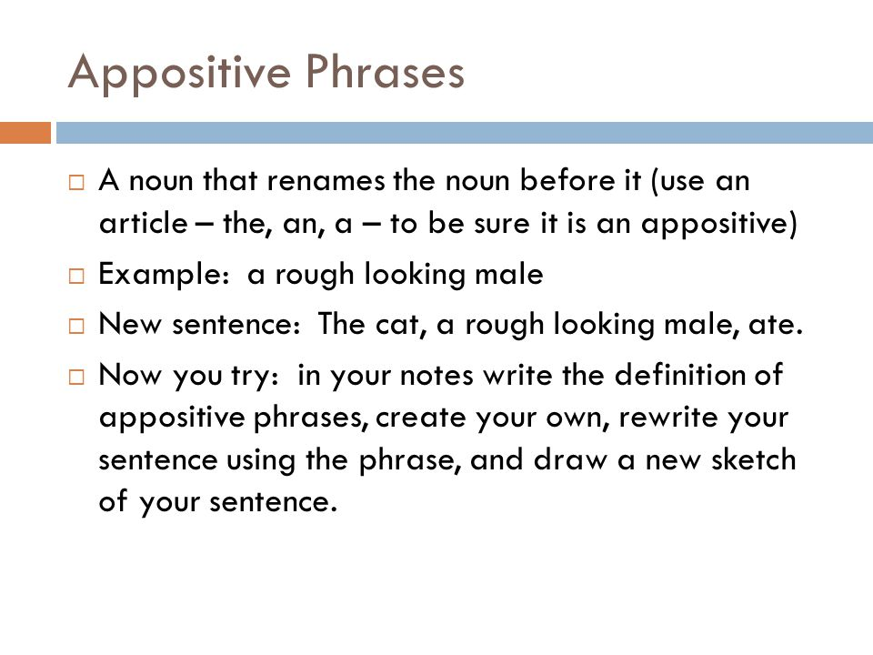 Appositive Phrases A noun that renames the noun before it (use an article – the, an, a – to be sure it is an appositive)