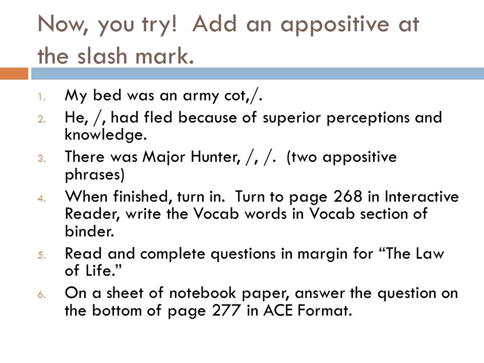 Now, you try! Add an appositive at the slash mark.