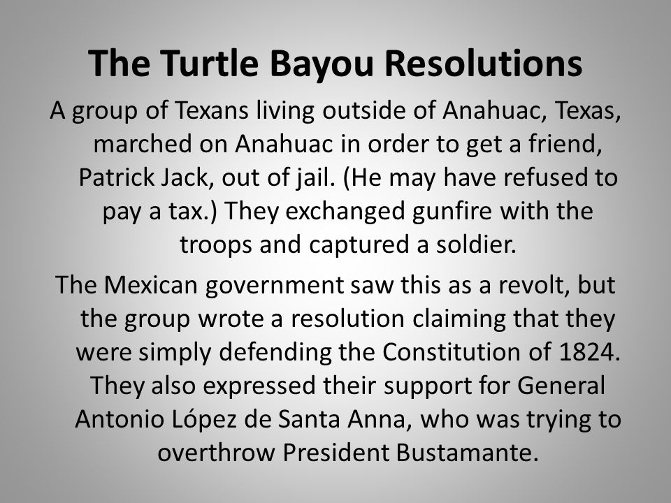 The Turtle Bayou Resolutions