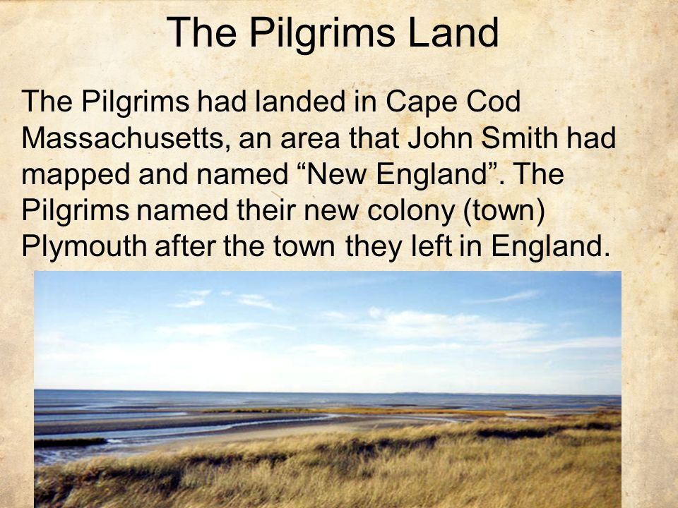 The Pilgrims Land