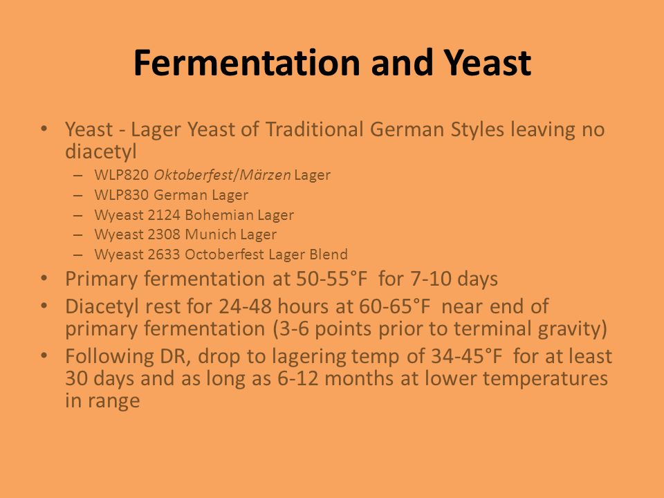 Fermentation and Yeast